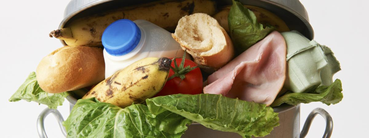 Wasted Food Equals Wasted Money